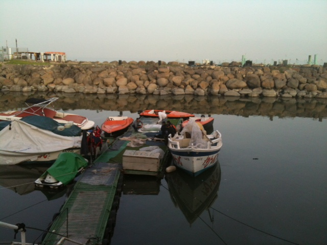boats in marina 12 24 2014